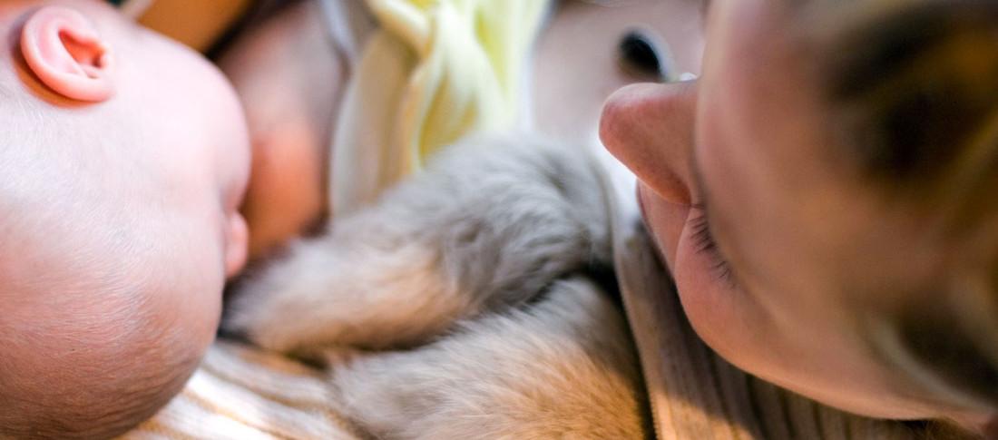 Amamentação no peito ajuda no desenvolvimento dentário